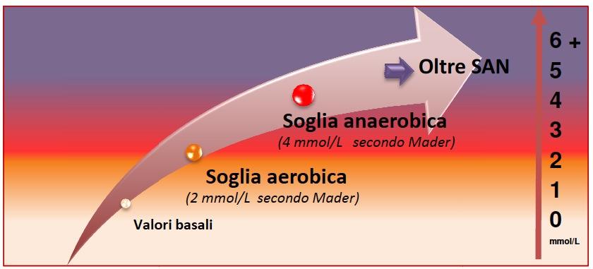 soglia aerobica