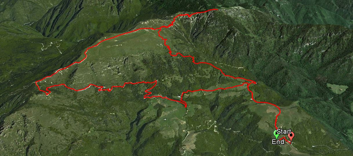 Monte Caplone 1976 m.