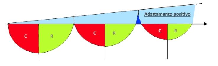 Fig.2: Esempio di adattamento positivo in seguito ad una successione di carichi intervallati da recupero completo. (Zetatraining)