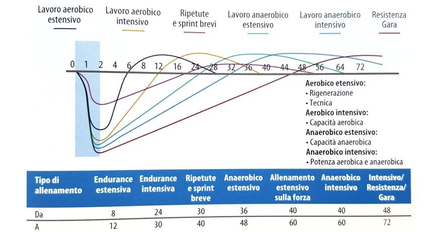 """Fig.re 4a-4b: Tempi di supercompensazione in funzione dello stimolo allenante. (Olbrecht, 2000) (Rappresentazione grafica tratta da """"Triathlon"""", cap.2 pag.45)"""
