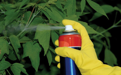 trattamenti-antiparassitari-piante-600x372