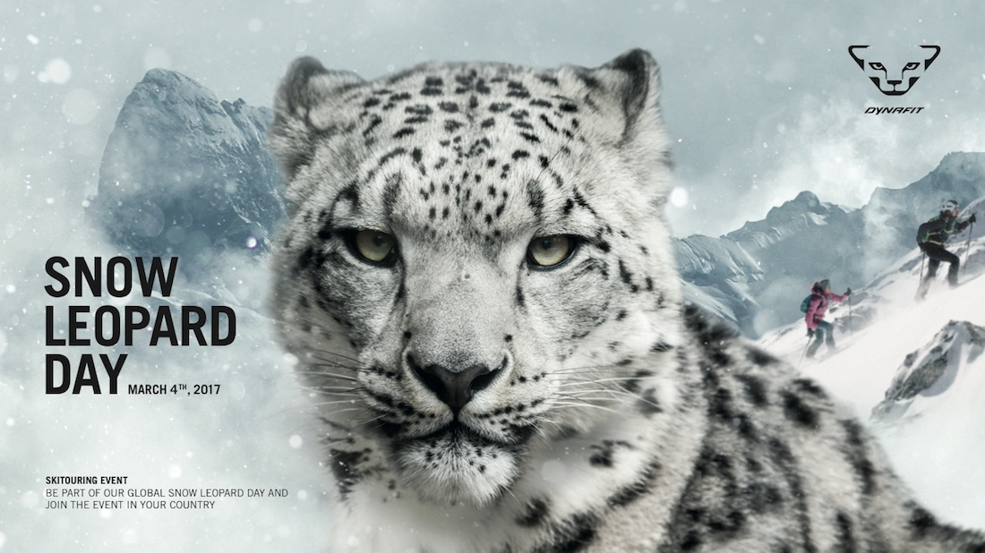 snow leopard day